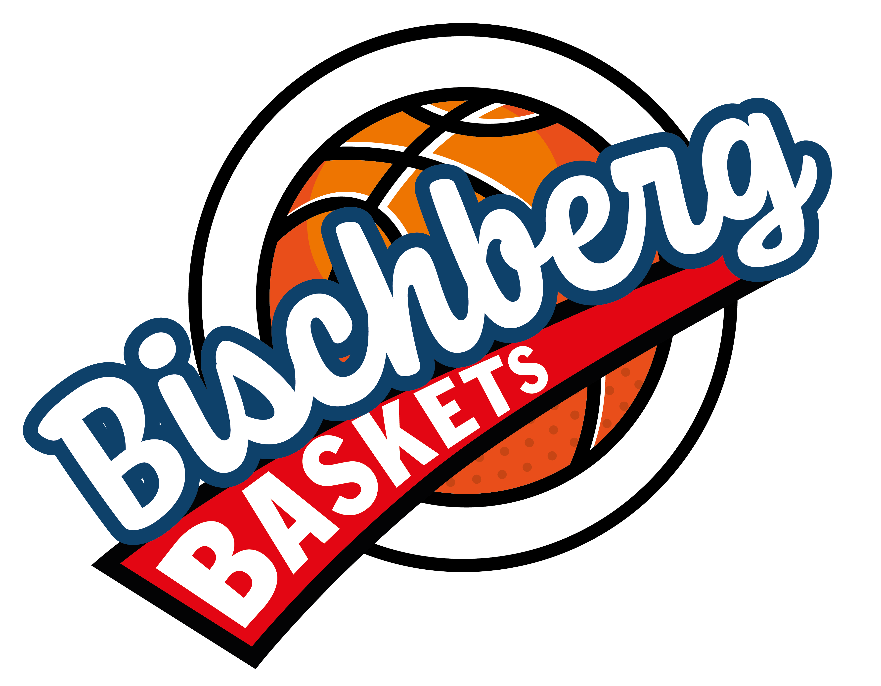 Logo Bischberg Baskets
